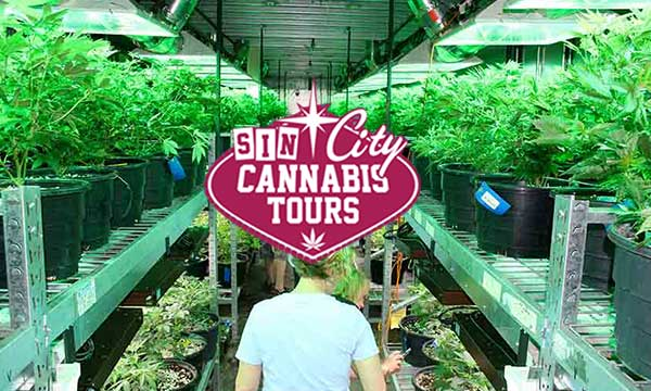 Las Vegas Cannabis grow tours